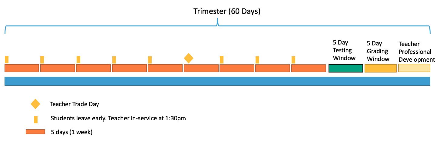CB Trimester Chart